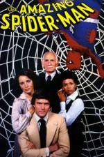 The Amazing Spider-man: Season 1