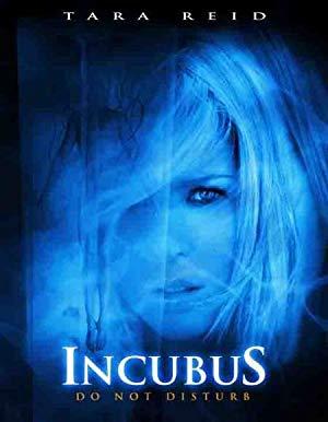 Incubus 2006