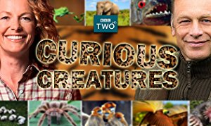 Curious Creatures: Season 2