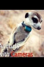 Animals With Cameras: Season 1